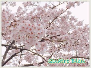 B8AEFEEC-A47E-4859-AD15-5B8A3596407C.jpg